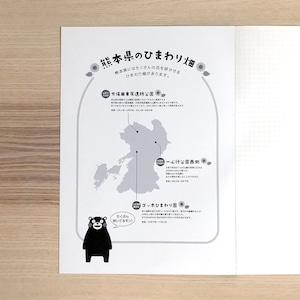 【水平開きノート】くまモン 夏