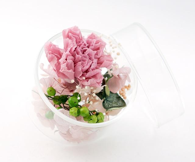 hikka アロマブルーム ハーフポットS カーネーショングリーン (OFF)【アロマオイル付】