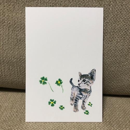 ポストカード 88(子猫)