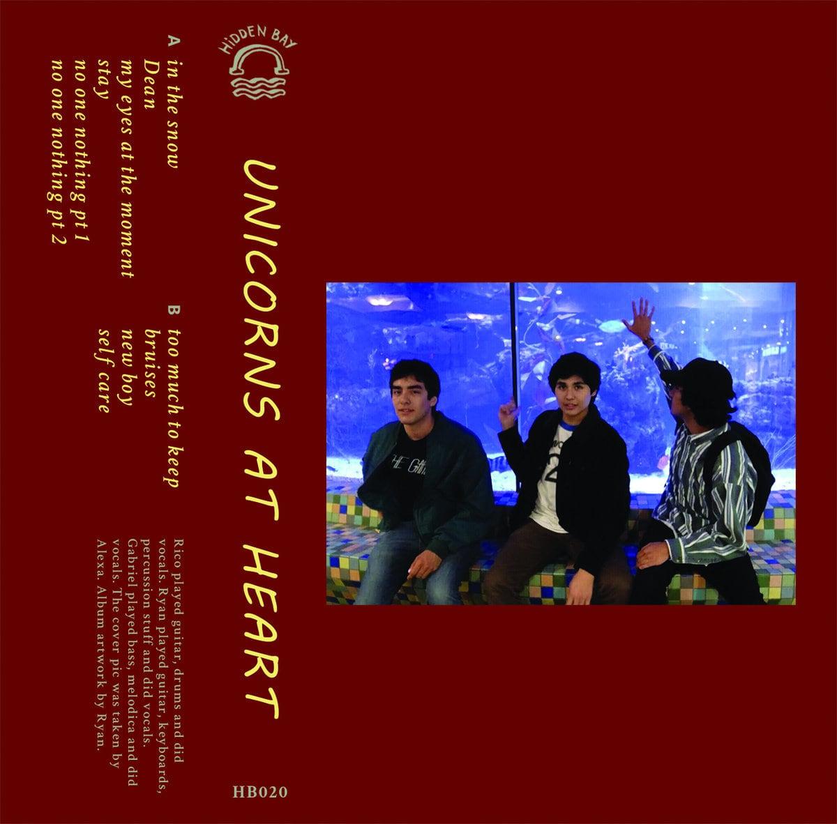Unicorns at Heart / Unicorns at Heart(70 Ltd Cassette)