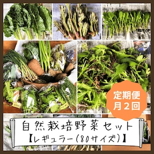 信州産 自然栽培『レギュラー定期便』月2回 80サイズ(農薬、肥料不使用)