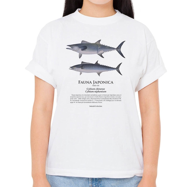 【オキザワラ・サワラ】シーボルトコレクション魚譜Tシャツ(高解像・昇華プリント)