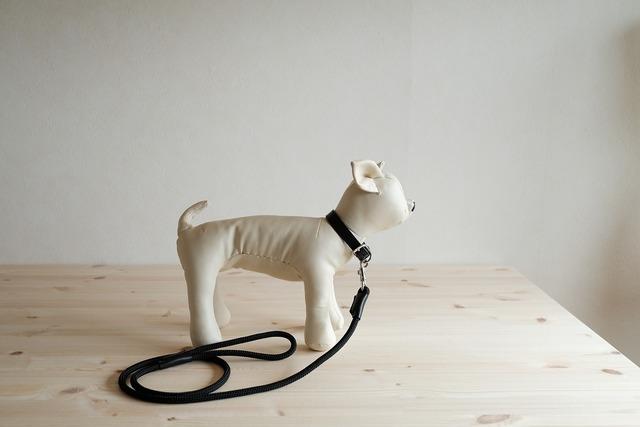 小型犬用のシンプルな首輪とリードのセット 黒