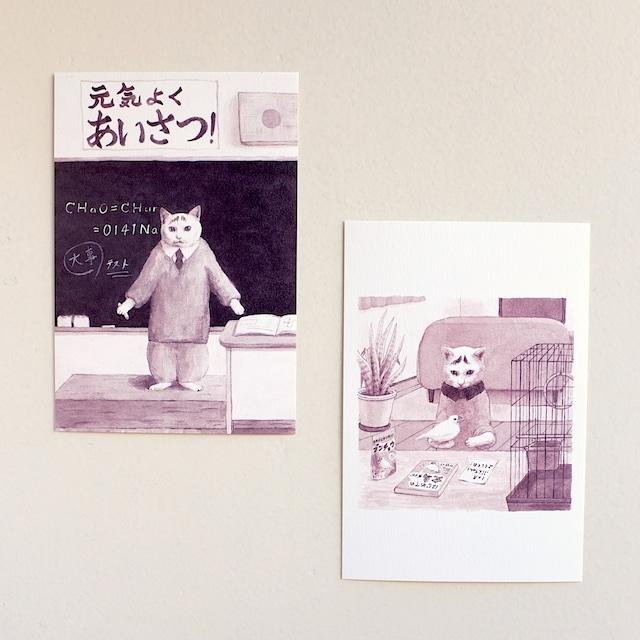 【出口かずみ】ポストカード