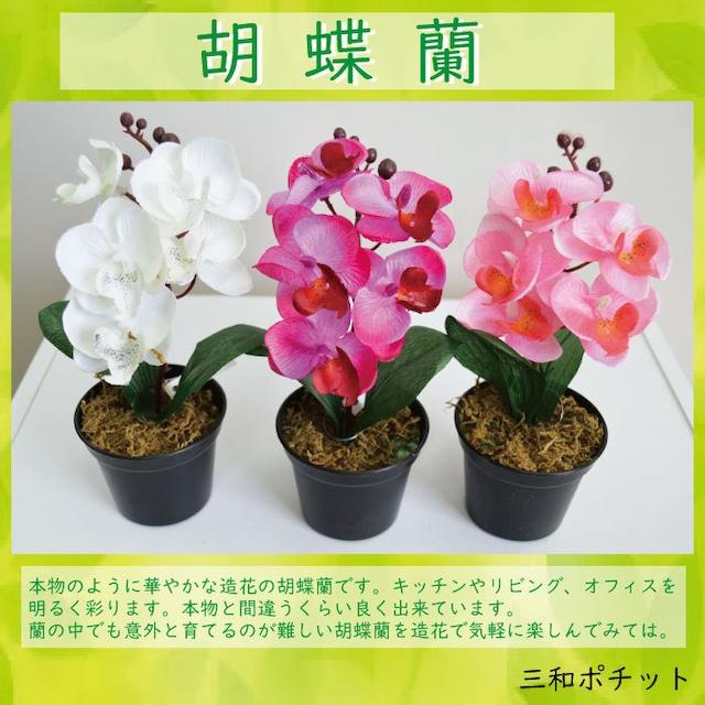 造花 蘭 ラン ht12573-511 胡蝶蘭 こちょう蘭 フェイクグリーン インテリアグリーン 枯れない グリーンプラント インテリアグリーン おしゃれ