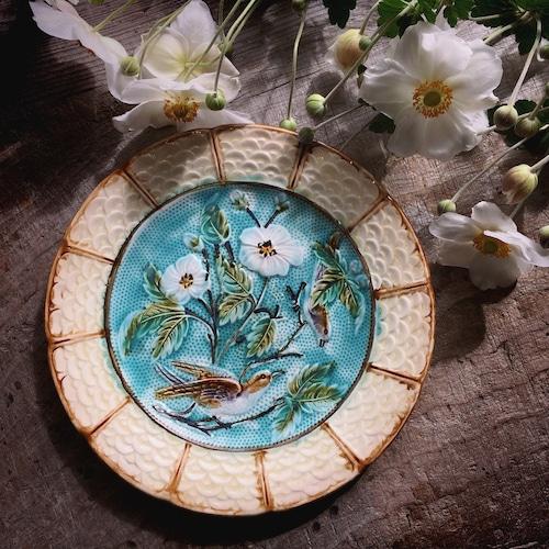 小鳥と白花のバルボティーヌ
