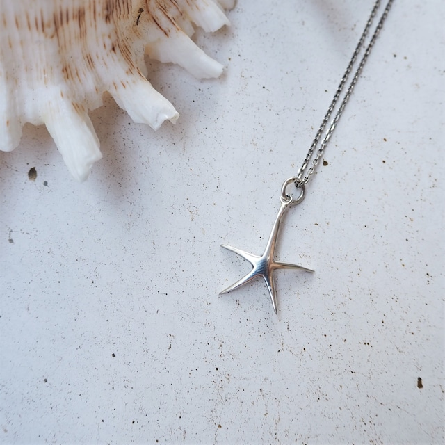 Star Fish PT《SILVER925》 18380314