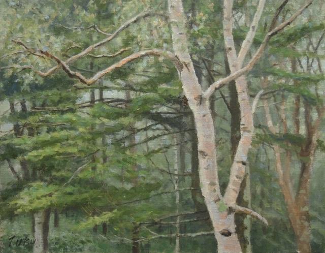 油絵#16「霧雨の森」F6号