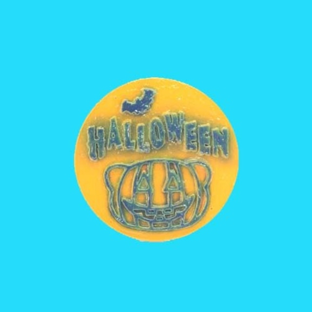 僕たちフェレット Halloween マグネットステッカー ⑥キャスト製(直径80mm)無料配送