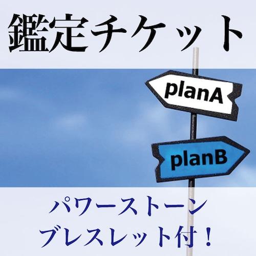 鑑定チケット/パワーストーンブレスレット付