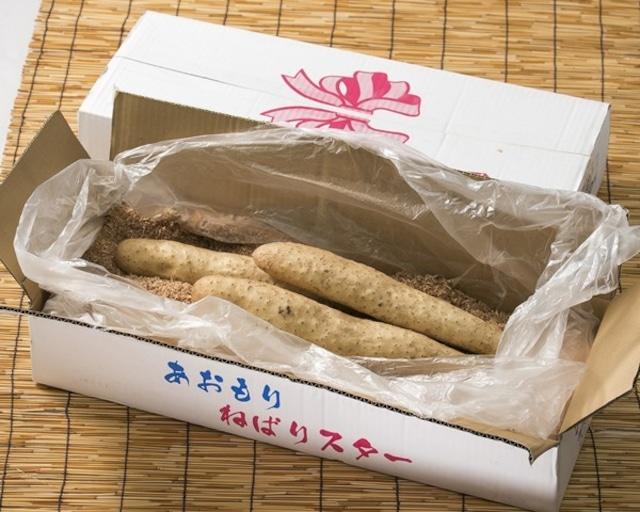 青森県六ケ所産 ネバリスター10kg