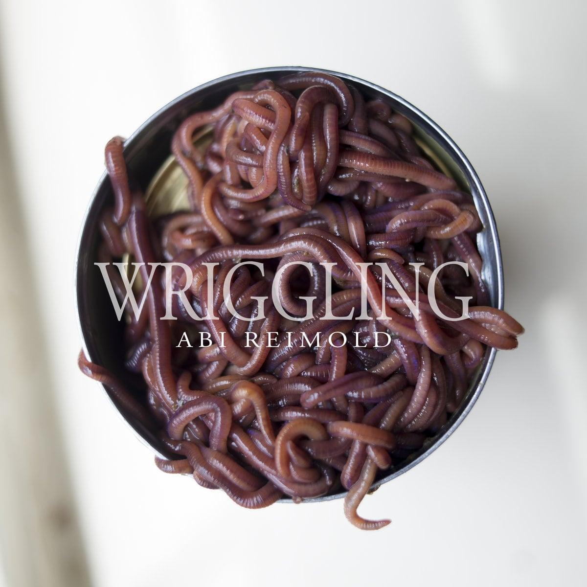 Abi Reimold / Wriggling (CD)