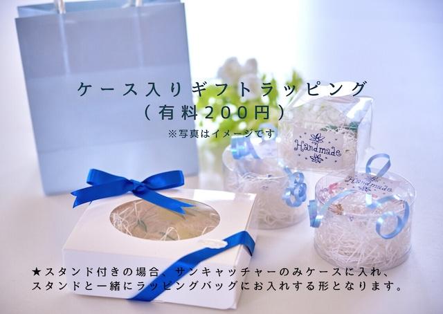 風水開運◆人気運アップサンキャッチャー
