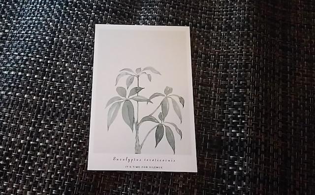 植物 ポストカード Z
