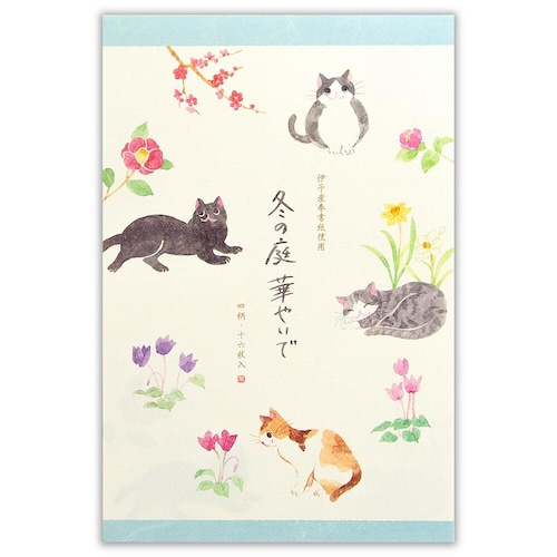 猫便箋(冬の庭華やいで)