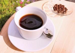 トリココーヒー 東ティモール 150g(豆・粉)