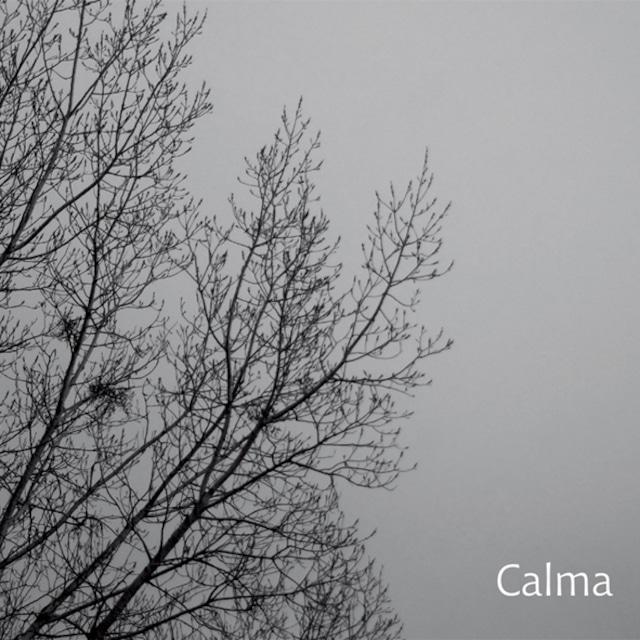 Carlos Aguirre Trio『Calma』(Shagrada Medra)