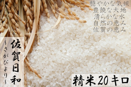 C577 【H30収穫米】みやき町産『さがびより(精米20kg)』8年連続特A受賞