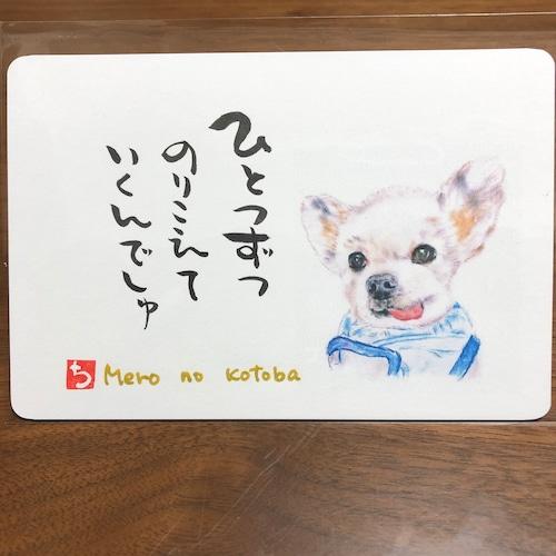 ポストカード 75(メロ)