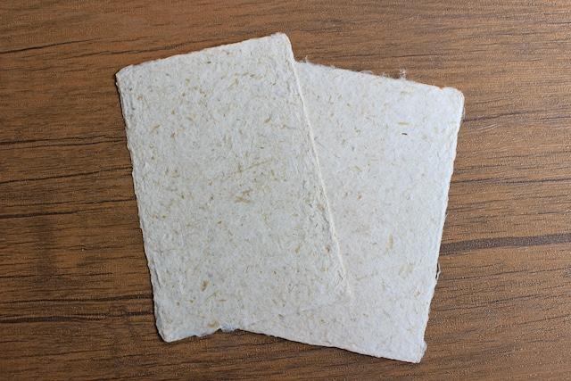 <野菜エコロジー>ほんのり繊維が見えるキャベツ入手すき和紙ポストカード(2枚セット)