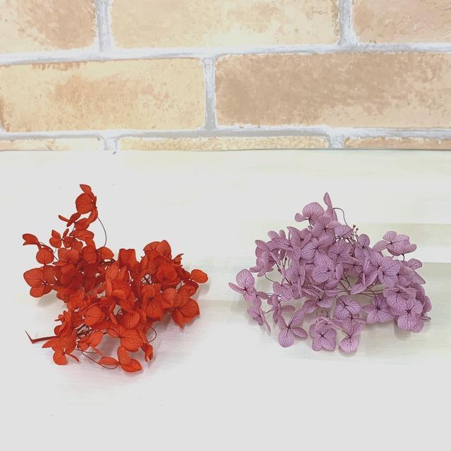 【花材・アジサイ】ソフトアナベルヘッド ハーバリウム用プリザーブドフラワー