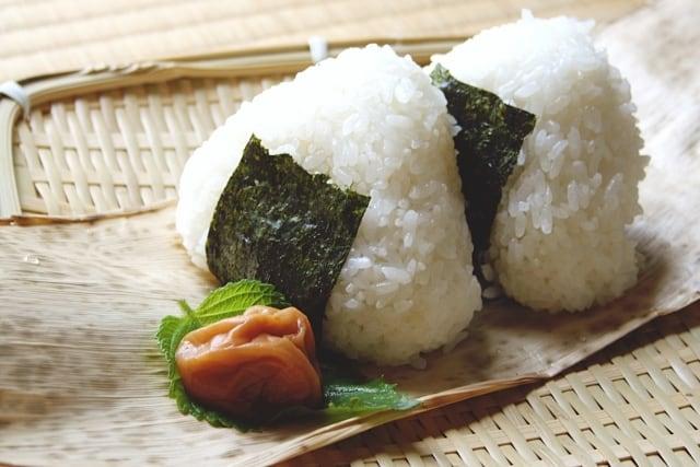 丹波篠山産 特別栽培コシヒカリ 5kg