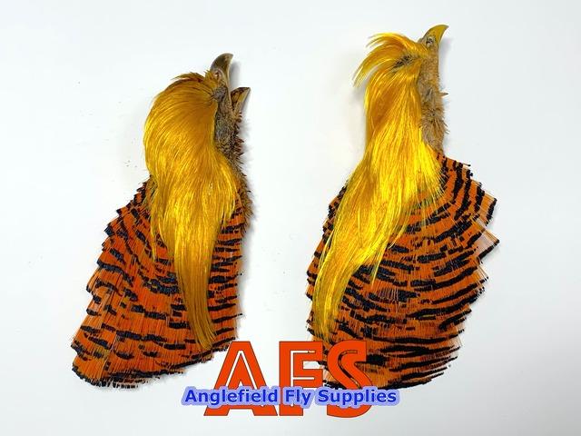 Golden Pheasant COMP Head / ゴールデンフェザントCOMPヘッド