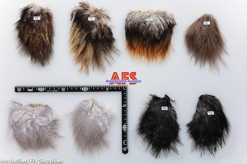 【 AFS 】Coq de Leon Saddle Patches