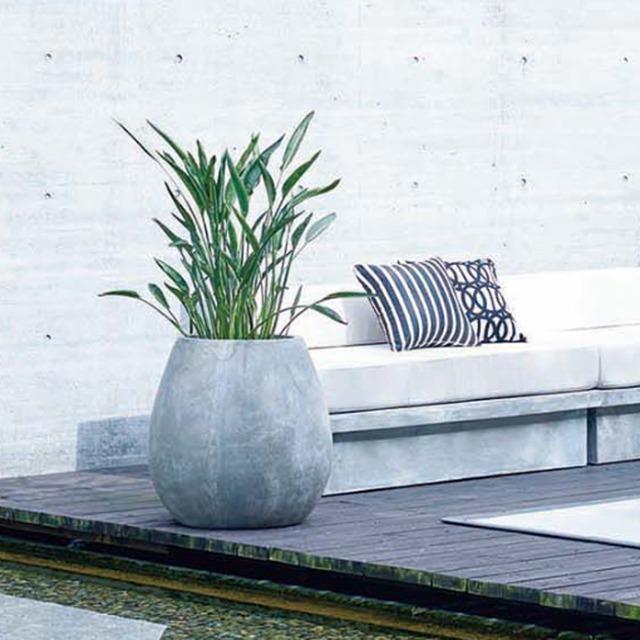 【お取り寄せ商品】LOIZA PLANT COVER M ASPLUND