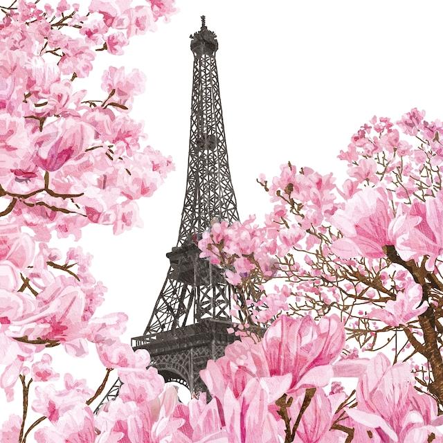 【Paperproducts Design】バラ売り2枚 ランチサイズ ペーパーナプキン April in Paris ホワイト