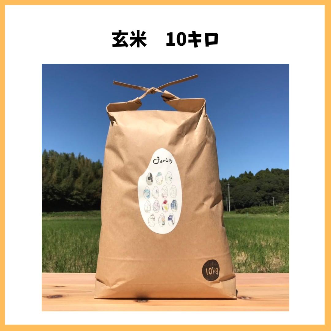 農薬も化学肥料も使わないで育てたお米【玄米 10kg】