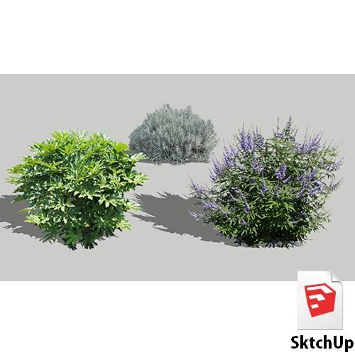 樹木SketchUp 4t_012 - 画像1