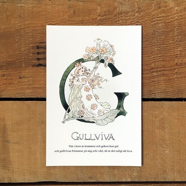 ポストカード「キバナノクリンザクラ@GULLVIVA(王子たちの花文字 - 7)」