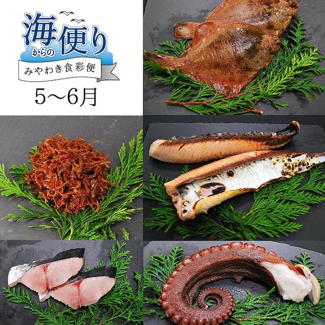 魚のみやわき《海からの便り》5〜6月分 【冷蔵商品】