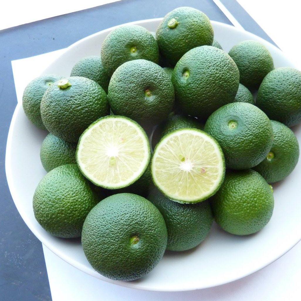 幻の柑橘・へべすライム x 1kg