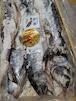 銀聖 生新巻鮭 北海道日高産 希少 ブランド鮭 約3kg