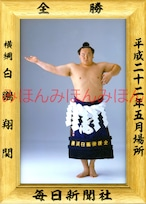 平成22年5月場所全勝 横綱 白鵬翔関(14回目の優勝)