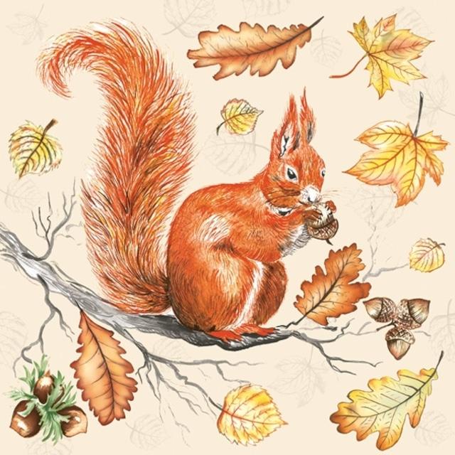 【Maki】バラ売り2枚 ランチサイズ ペーパーナプキン Squirrel on Branch クリーム