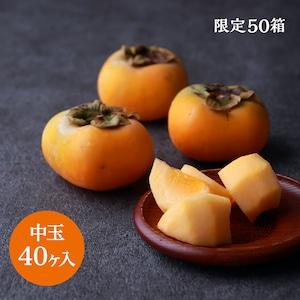 本場松ヶ岡産 庄内柿(中玉 40ヶ入)