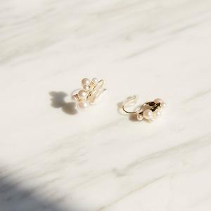 nim-19 Earrings