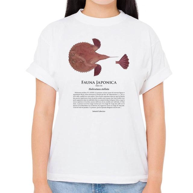 【アカグツ】シーボルトコレクション魚譜Tシャツ(高解像・昇華プリント)
