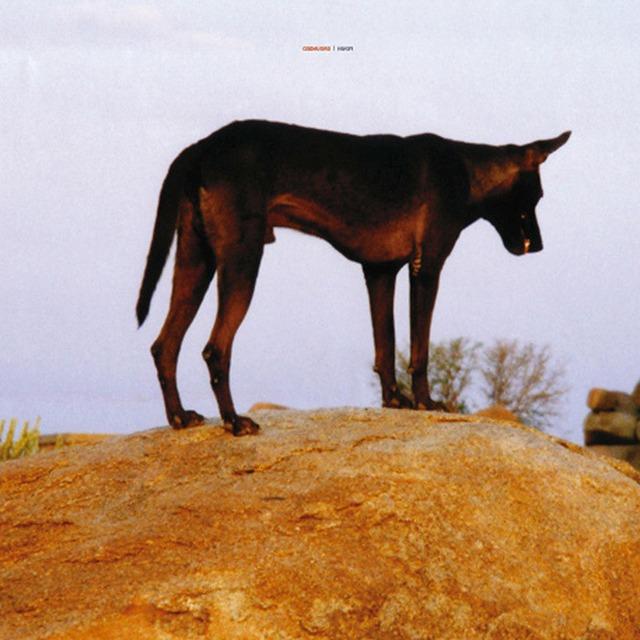 Fenin - Grounded (2LP) - メイン画像