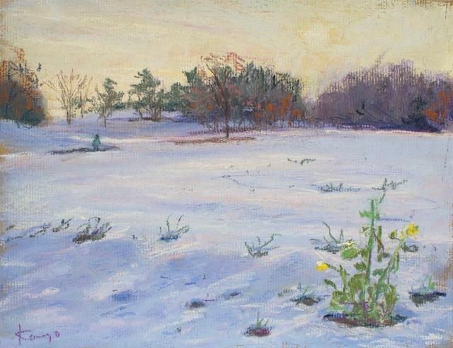 NO.48「花畑と夕陽・1月」