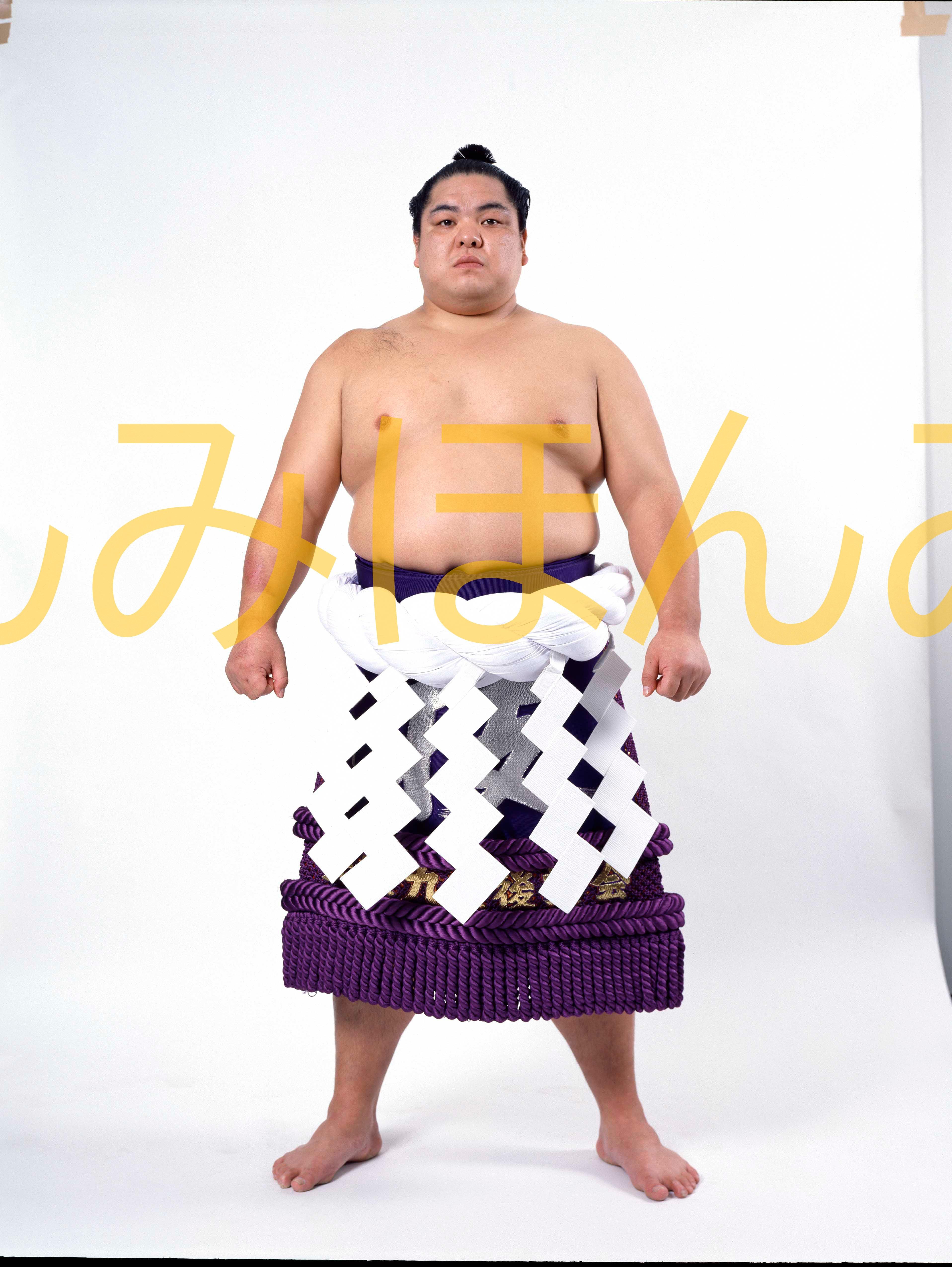 平成3年3月場所優勝 横綱 北勝海信芳関(8回目最後の優勝)