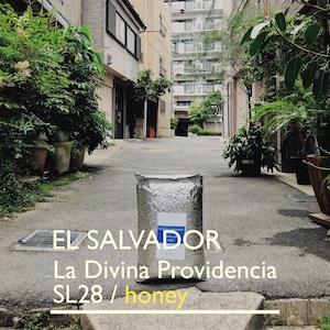 EL SALVADOR [SL28] -中浅煎- 100g