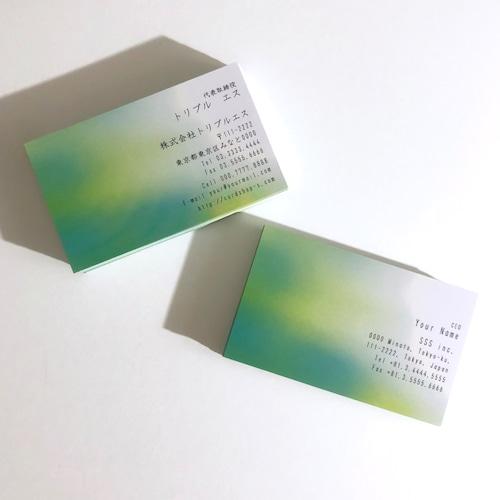69d1_biz【100枚】ビジネス名刺【英表記】