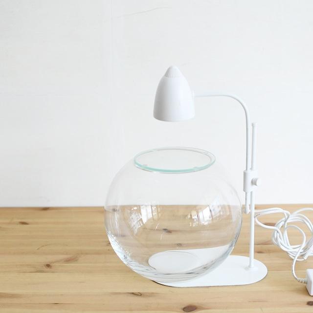 【ガラス容器】ラージボール・M ふた付き(200xh165mm)◆LEDライトset