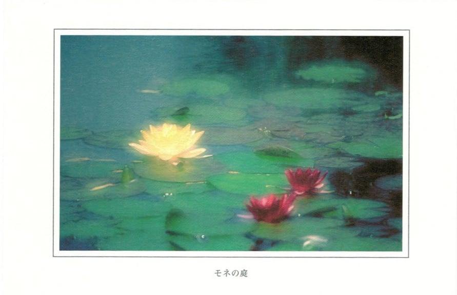 ポストカード モネの庭(12枚入り)