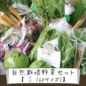 信州産 自然栽培『野菜セットS』60サイズ(農薬、肥料不使用)