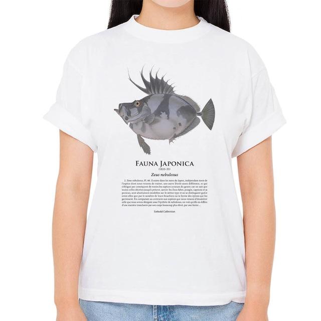 【カガミダイ】シーボルトコレクション魚譜Tシャツ(高解像・昇華プリント)